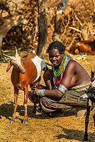 Woman miiking a goat, Arbore tribe village, Omo Valley, Ethiopia.