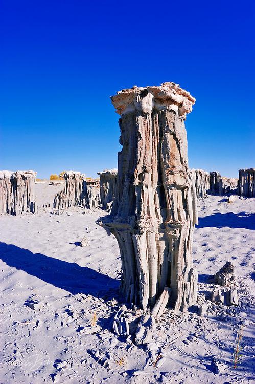 Delicate sand tufas at the south shore of Mono Lake, Mono Basin National Scenic Area, California