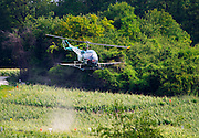 A helicopter spraying the vineyards, the village of Hautvillers in Vallee de la Marne, Champagne, Marne, Ardennes, France