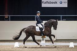 Veeze Bart, NED, Kyton<br /> KWPN Hengstenkeuring 2021<br /> © Hippo Foto - Dirk Caremans<br />  06/02/2021