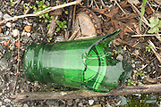 close up of a broken beer bottle