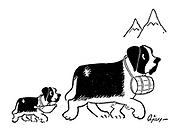 (St Bernard puppy follows its parent through the mountains carrying a baby bottle instead of a brandy barrel)