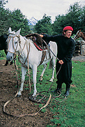 Gaucho, saddles his horse, Torres del Paine National Park, Patagonia, Chile.