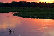 Aquidauana_MS, Brasil...Por-do-sol no Rio Correntoso, Pousada Ararauna, Mato Grosso do Sul...The sunset in the Correntoso river, Araruana hotel, Mato Grosso do Sul...FOTO: JOAO MARCOS ROSA / NITRO