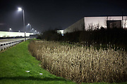Alongside the A5 highway, an industrial landscape is illuminated in light from roadside street-lighting. Reeds are in the foreground in front of a giant generic warehouse that glows from its own territory. Grass is next to the crash-barrier and faint mist is seen on this cold winter night at the DIRFT warehouse logistics park in Daventry, Northamptonshire England. This 365 acre site off Junction 18 of the M1 motorway is a hub for road, rail and service infrastructure, some 2.3m sq.ft. of distribution and manufacturing floorspace had been constructed by 2004 and occupiers including Tesco's, Tibbett & Britten plc, Ingram Micro, Royal Mail, the W.H. Malcolm Group, Eddie Stobart Ltd, Wincanton and Exel, have been attracted to this unique logistics location.