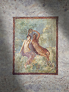 Roman Nero Period fresco wall painting of Perseus and Andromeda, Naples National Archaeological Museum, from a house in the Insula Occidentalis at Pompeii , inv 9058 , .<br /> <br /> If you prefer to buy from our ALAMY PHOTO LIBRARY  Collection visit : https://www.alamy.com/portfolio/paul-williams-funkystock - Scroll down and type - Roman Art Erotic  - into LOWER search box. {TIP - Refine search by adding a background colour as well}.<br /> <br /> Visit our ROMAN ART & HISTORIC SITES PHOTO COLLECTIONS for more photos to download or buy as wall art prints https://funkystock.photoshelter.com/gallery-collection/The-Romans-Art-Artefacts-Antiquities-Historic-Sites-Pictures-Images/C0000r2uLJJo9_s0