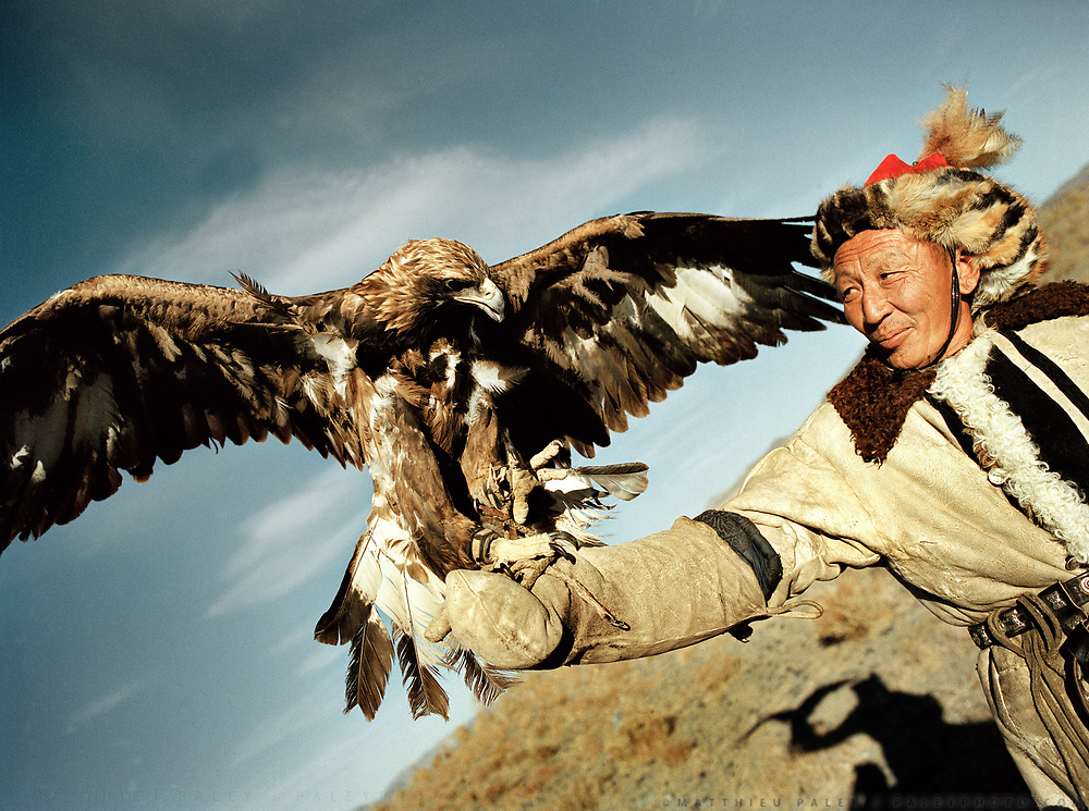 A Berkuchi showing off his eagle. Adult eagle can weight up to 4 kilos.<br /> <br /> Eagle Hunting festival in Western Mongolia, in the province of Bayan Olgii. Mongolian and Kazak eagle hunters come to compete for 2 days at this yearly gathering. Mongolia