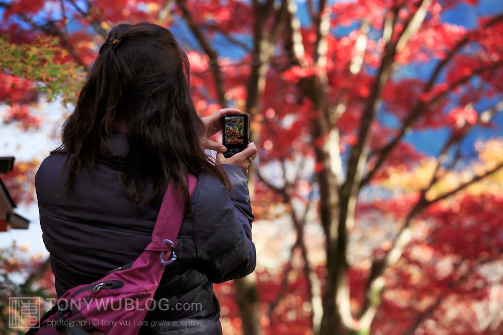 Enjoying the scenery and taking photos of the momiji autumn foliage at Kurama-dera in the far north of Kyoto, Japan.