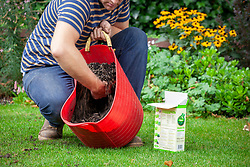 Mixing grass seed with compost and scattering it on a lawn