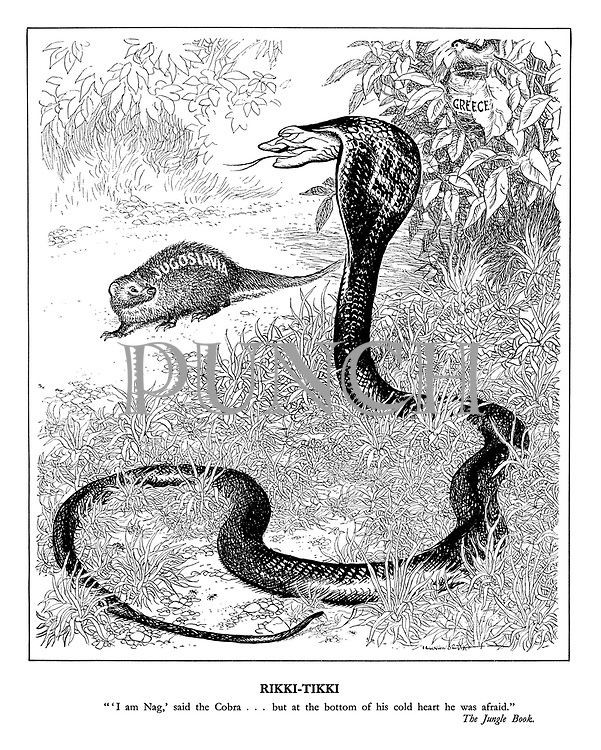 "Rikki-Tikki. ""'I am Nag', said the Cobra ... but at the bottom of his cold heart he was afraid."" The Jungle Book"
