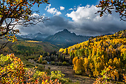 Along the drive to Blue Lakes Trailhead on County Road 7, see bright fall foliage colors beneath Mt Sneffels in Uncompahgre National Forest, San Juan Mountains, out of Ridgway, Colorado, USA.