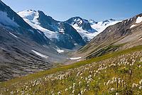 Glaciated Peaks of Boulder/Salal Divide, Coast Range British Columbia Canada