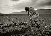 Women working the land by hand on the plains of Kakariki.<br /> Earning less than $1 a day human labour was cheaper here than tractors.<br /> There were ample labor reserves in the agricultural population with ten-hour workdays the minimum in most farms. More women than men worked in collectivized agriculture.