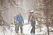 Backcountry skiers in a blizzard, Uncompahgre National Forest, Colorado.