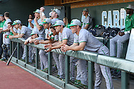 16 May 2016: Notre Dame players in the dugout. The University of North Carolina Tar Heels hosted the University of Notre Dame Fighting Irish in an NCAA Division I Men's baseball game at Boshamer Stadium in Chapel Hill, North Carolina.
