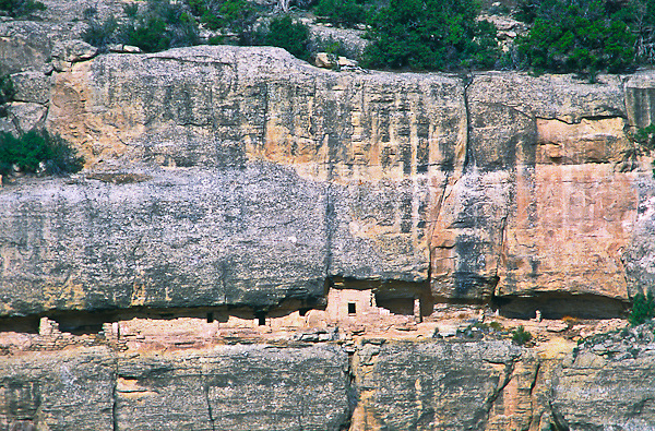 House of Many Windows.  Found on the west wall of Cliff Canyon.  Mesa Verde National Park, Colorado.