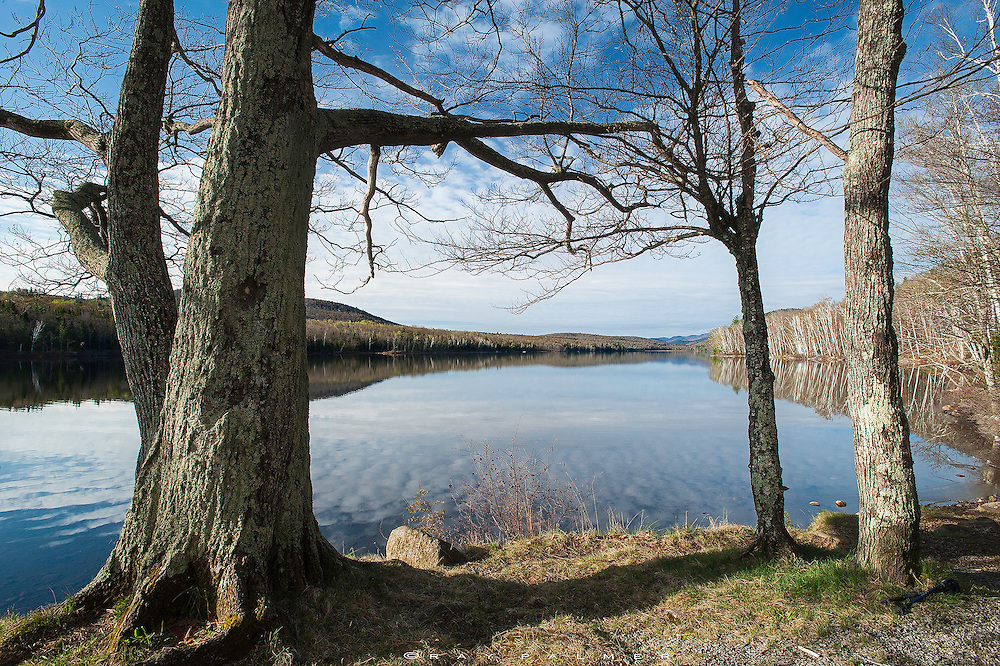 Thirteenth Lake, Adirondacks, NY.  Threatening the starkness of early spring were blue skies, spots of green, and a strengthening sun.  I stop at the end of Thirteenth Lake before heading to Peaked Mountain and watch the reflection of birch trees and couds on the glassy water.  There is a deep stillness in the lake at this early hour, a calm I wish I felt in me.  I stare at the water waiting for the circle of a rising fish, and become lost in thought I'd rather leave here on this shore.  I pack up my gear and head down the trail.  There is always so much to carry.