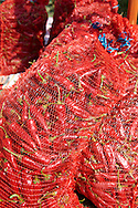sacks  of chilis being dried at Hungary's paprika capital - Kalacsa, Hungary.