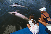 A young girl watches bottle nose dolphins play at the Dolphin Research Center  June 27, 1996 in Marathon Key, FL.  The center is where the original Flipper was trained and specializes in returning trained dolphins to the wild.