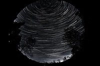 Night Sky Over New Jersey. Composite of images (03:30-04:59)  taken with a Nikon D850 camera and 8-15 mm fisheye lens (ISO 800, 10 mm, f/5.6, 30 sec).