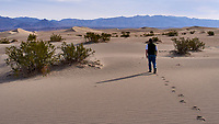 Michael Walking into Mesquite Flats Sand Dunes. Death Valley National Park. Image taken with a Leica X1 camera (ISO 100, 24 mm, f/6.3, 1/800 sec).