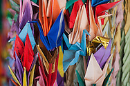 Paper cranes at  the Nanjing Massacre Memorial Hall