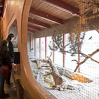 Visitors at the waterfall exhibit in the Discovery Center at the Navajo Nation Zoo in Window Rock, Monday, May 20.