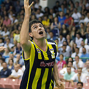 Fenerbahce Ulker's Mirsad TURKCAN during their Turkish Basketball league Play Off Final fifth leg match Efes Pilsen between Fenerbahce Ulker at the Ayhan Sahenk Arena in Istanbul Turkey on Sunday 30 May 2010. Photo by Aykut AKICI/TURKPIX