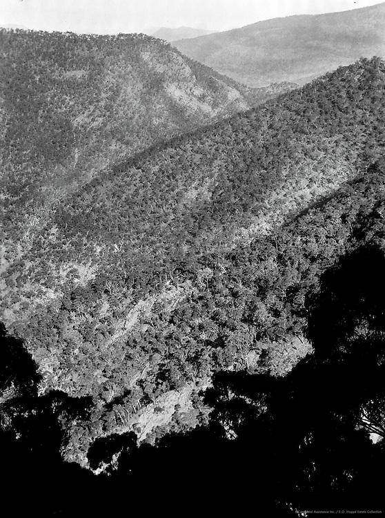 Blue Mountains, New South Wales, Australia, 1930