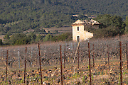 Domaine de Montcalmes in Puechabon. Terrasses de Larzac. Languedoc. A tool shed hut in the vineyard. Grenache grape vine variety. France. Europe. Vineyard.