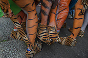 A group of air hostesses, with all over body paint,  calling themselves the flying tigers arrive - Naked runners take part in the ZSL London Zoo Streak for Tigers. They are raising money for tigers whose group name is, apparently, a streak.