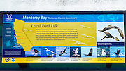Interpretive sign on the San Simeon Pier, Hearst San Simeon State Park, California USA