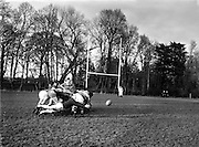 Irish Rugby Football Union, Ireland v Scotland, Five Nations, Irish team practice at Clonskeagh, Dublin, Ireland, Thursday 28th March, 1958,.28.3.1958, 3.28.1958,.  .Irish Team, ..P J Berkery, Wearing number 15 Irish jersey, Full back, Landsdowne Rugby Football Club, Dublin, Ireland, and, London Irish Rugby Football Club, Surrey, England, ..A J O'Reilly, Wearing number 14 Irish jersey, Right Wing, Old Belvedere Rugby Football Club, Dublin, Ireland,  ..N J Henderson, Wearing number 13 Irish jersey, Right centre, N.I.F.C, Rugby Football Club, Belfast, Northern Ireland, ..D Hewitt, Wearing number 12 Irish jersey, Left centre, Queens University Rugby Football Club, Belfast, Northern Ireland,..A C Pedlow, Wearing number 11 Irish jersey, Left wing,  C I Y M S Rugby Football Club, Belfast, Northern Ireland, ..J W Kyle, Wearing number 10 Irish jersey, Stand Off, N.I.F.C, Rugby Football Club, Belfast, Northern Ireland, ..A A Mulligan, Wearing number 9 Irish jersey, Scrum Half, Cambridge University Rugby Football Club, Cambridge, England, and, Wanderers Rugby Football Club, Dublin, Ireland, ..P J O'Donoghue, Wearing  Number 1 Irish jersey, Forward, Bective Rangers Rugby Football Club, Dublin, Ireland,  ..A R Dawson, Wearing number 2 Irish jersey, Forward, Wanderers Rugby Football Club, Dublin, Ireland, ..B G M Wood, Wearing number 3 Irish jersey, Forward, Garryowen Rugby Football Club, Limerick, Ireland, ..J B Stevenson, Wearing number 4 Irish jersey, Forward, Instonians Rugby Football Club, Belfast, Northern Ireland,..W A Mulcahy, Wearing number 5 Irish jersey, Forward, University College Dublin Rugby Football Club, Dublin, Ireland, ..J A Donaldson, Wearing number 6 Irish jersey, Forward, Collegians Rugby Football Club, Belfast, Northern Ireland, ..J R Kavanagh, Wearing number 7 Irish jersey, Forward, Wanderers Rugby Football Club, Dublin, Ireland, ..N A Murphy, Wearing number 8 Irish jersey, Forward, Cork Constitution Rugby Football Club, Cork, Ireland,.