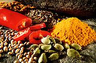 Fresh spices food photos