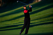 on the XXth hole as third round play continues during the Genesis Open golf tournament at Riviera Country Club on Sunday, Feb. 17, 2019, in the Pacific Palisades area of Los Angeles. (AP Photo/Ryan Kang)