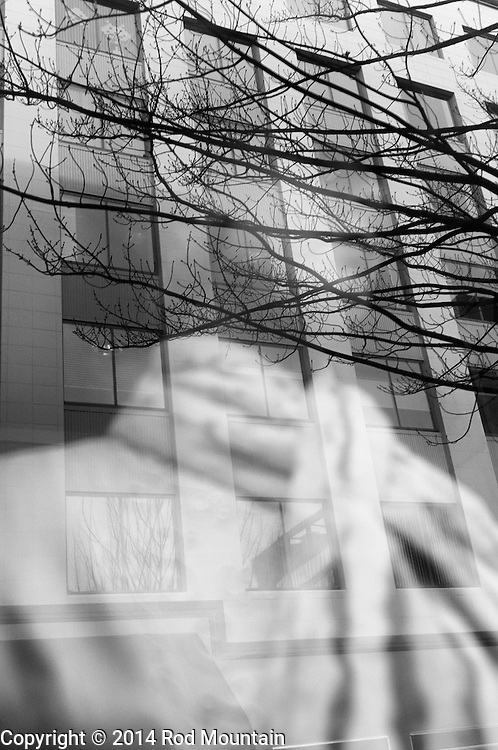 Through a city window an abstract is captured on a cold January day. Photo: © Rod Mountain