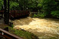 Rock Brook Flooding. Hurricane Irene. Image taken with a Leica X1 camera.