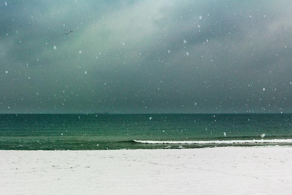 Snow raining by the sea