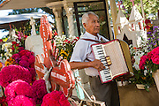 An elderly man plays the accordion at a gravesite in honor of the dead at the San Antonino Castillo cemetery during the Day of the Dead Festival known as Día de Muertos on November 3, 2013 in San Antonino Castillo Velasco, Oaxaca, Mexico.