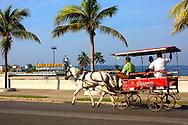 Horse and wagon in Cienfuegos, Cuba.