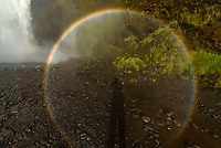 At the base of the 200' tall Skógafoss waterfall in Iceland I saw something I've never seen before: a 360° rainbow. Every rainbow is actually a full circle, but the lower part is almost always blocked by the horizon. There are only a few situations where a full 360° rainbow may become visible. One way is to have a very high vantage point, where you can clearly see below. A steep mountaintop or an airplane window would work under perfect weather conditions. But in this case, it was spray from the waterfall that caused the rare optical effect. The rainbow faded in and out depending on the wind and where I was standing. The amount of mist in the air had to be just right. The sun also needed to be low on the horizon, so that the light would be shining through the mist at just the right angle. The radius of a rainbow from the center (the antisolar point) to the outer edge is always 42°. Since my widest lens only had a field of view of 81°, I couldn't quite capture it in it's entirety.