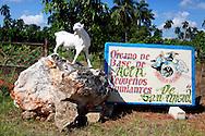 Farm sign near San Miguel de los Banos, Matanzas, Cuba.