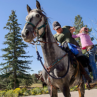 Helen Hammond lifts her daughter Amanda Hammond into the saddle as they head out on a ride with the Zuni Mountain Chapter of the Backcountry Horsemen of New Mexico Saturday near Continental Divide.