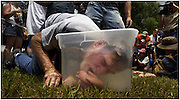 """East Dublin, Ga. - July 9, 2005: In a stunning upset, Melvin Davis loses his title in the """"Redneck Bobbing for Pigs Feet"""" contest during The Tenth Annual Summer Redneck Games in East Dublin, Ga. July 9. 2005. (Photo/Stephen Morton)"""