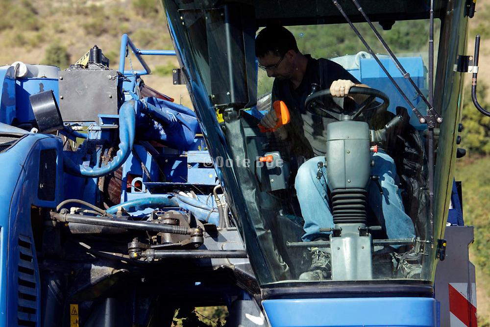 mechanical harvesting of grapes for wine France Languedoc Aude Razes 2017