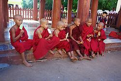 Young Monks Having Ice Cream At Shwezigon Pagoda