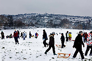 Parliament hill becomes a winter playground on snow covered Hampstead Heath, London