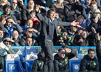 Football - 2016 / 2017 Premier League - Chelsea vs. West Bromwich Albion<br /> <br /> Chelsea Manager Antonio Conte in the sunshine with arms outstretched <br />  at Stamford Bridge.<br /> <br /> COLORSPORT/DANIEL BEARHAM