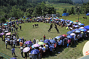 LIUZHOU, CHINA - SEPTEMBER 16: <br /> <br /> Two horses fight during a competition in Miao Autonomous County of Rongshui on September 16, 2016 in Liuzhou, Guangxi Province of China. The horse competition is held to celebrate harvest on the August 16th in Chinese calendar. <br /> ©Exclusivepix Media