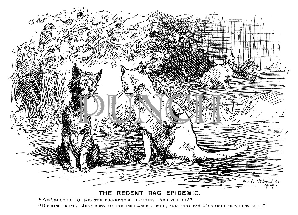 """The Recent Rag Epidemic. """"We're going to raid the dog-kennel to-night. Are you on?"""" """"Nothing doing. Just been to the insurance office, and they said I've only one life left."""""""